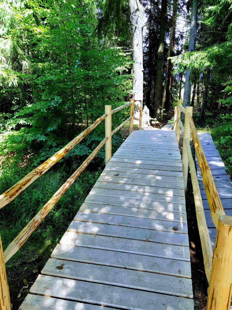Bridge to enter Mohos Peat Bog