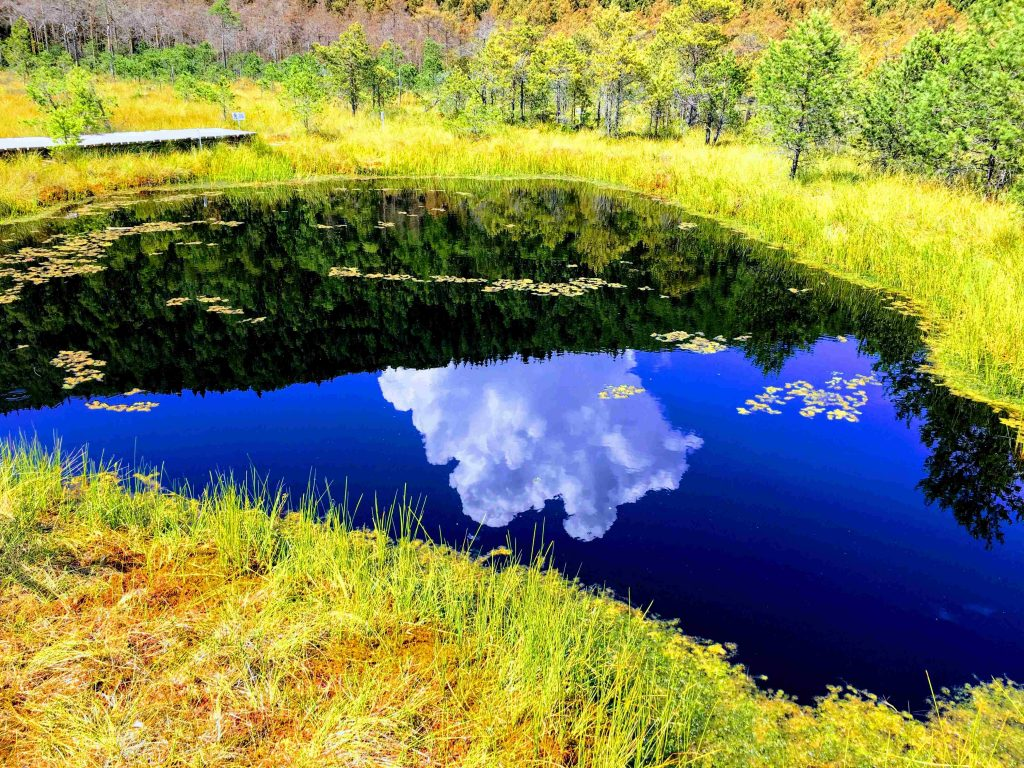 22 meters deep lake at Mohos Peat Bog