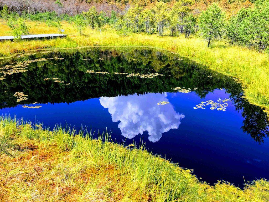 22 meters deep lake at Mohos Peat Bog