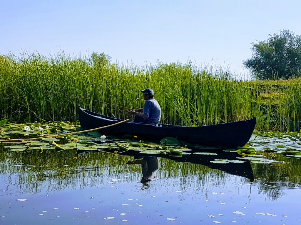 Fisherman in Danube Delta
