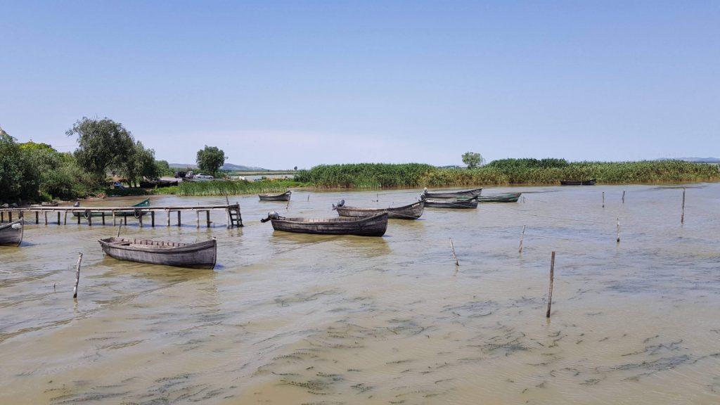 Boats on Razim Lake