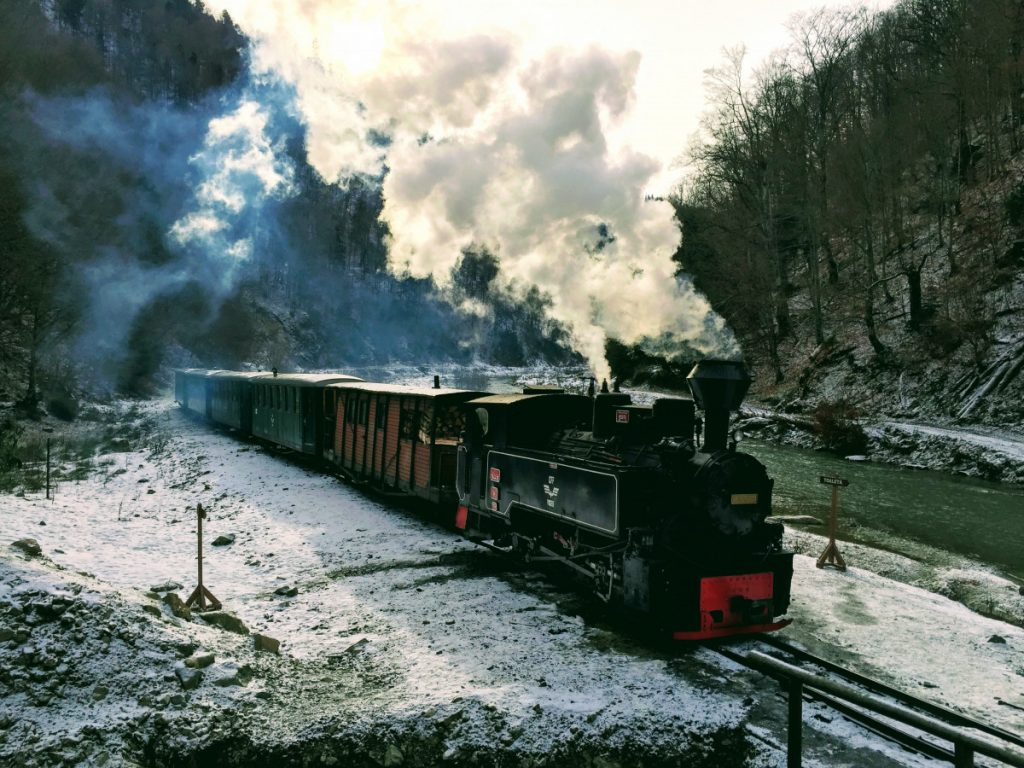 Steam Train Mocanita from Viseu de Sus