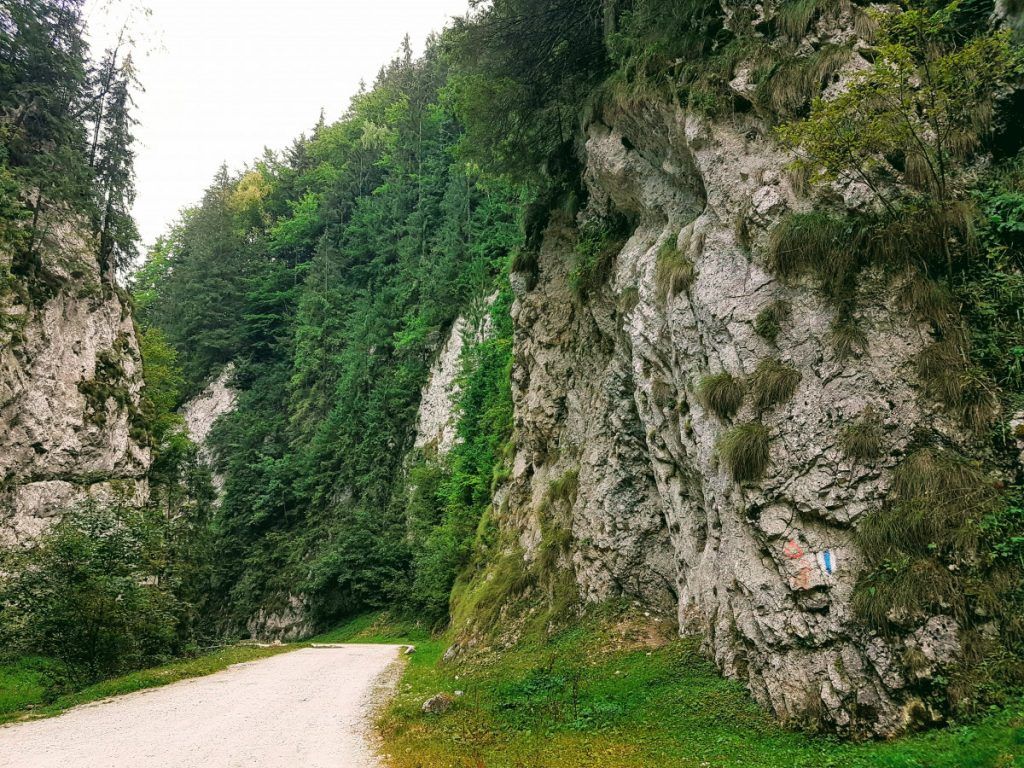 Dâmbovicioara Gorges, Brasov, Villages in Romania