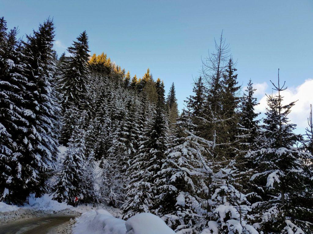 Transbucegi Road in winter