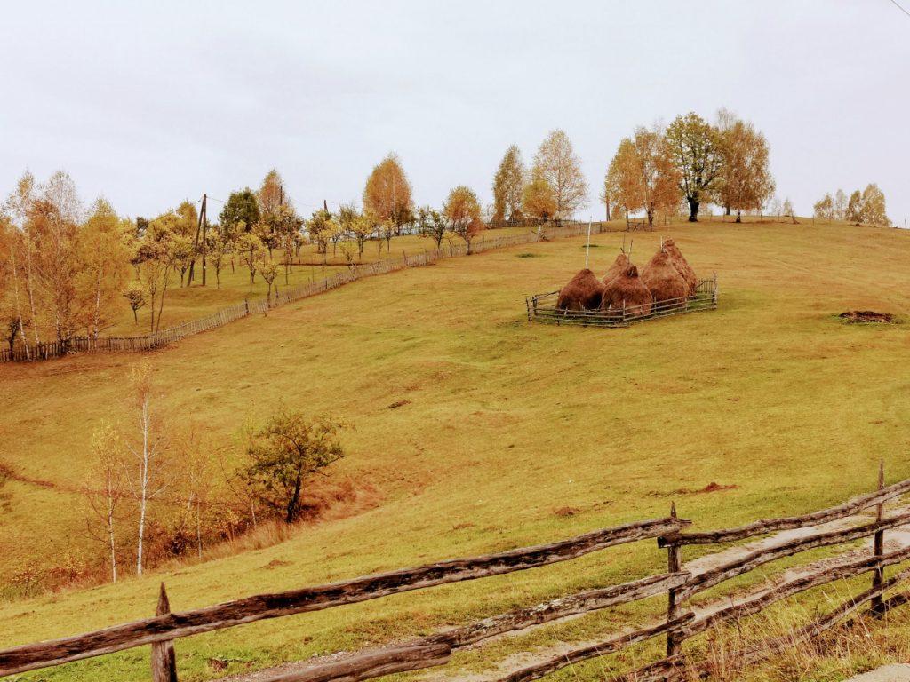 View in Târsa Village