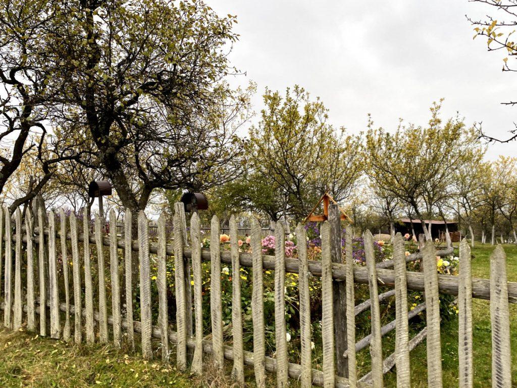 Garden cemeteries in Târsa Village