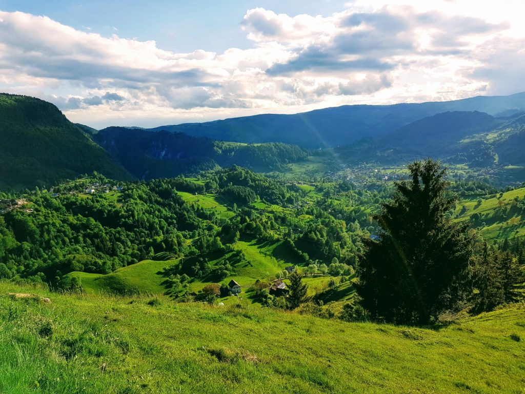 Green fields in Rucar Bran area