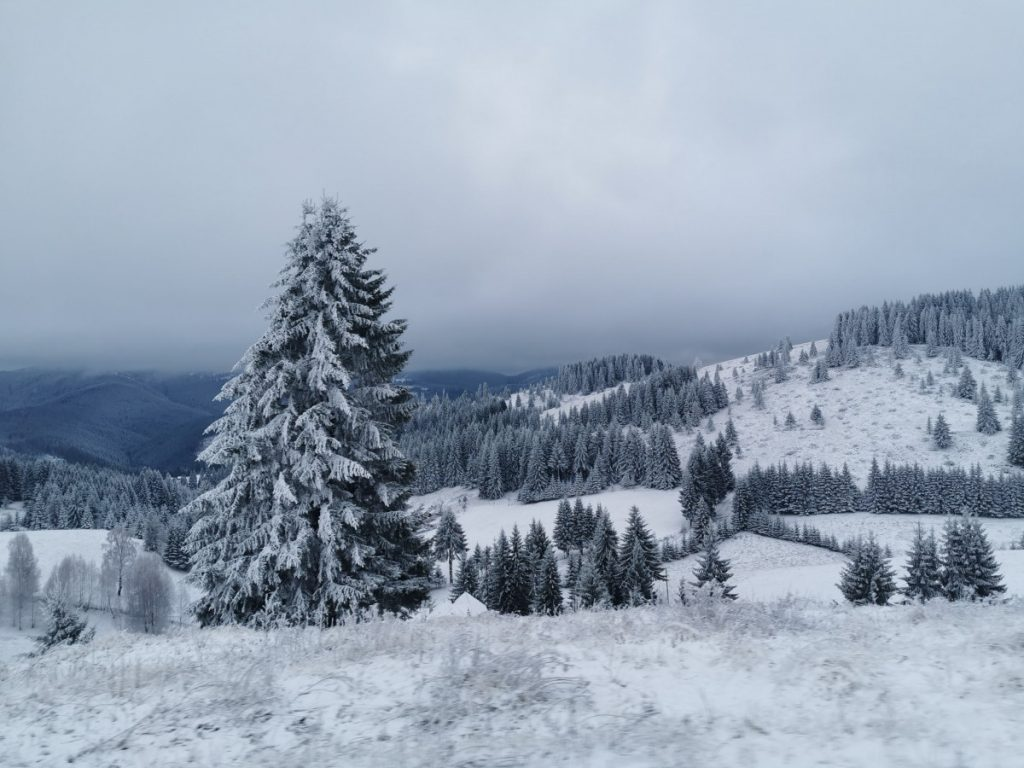 Winter wilderness on Rucar Bran Mountain Pass