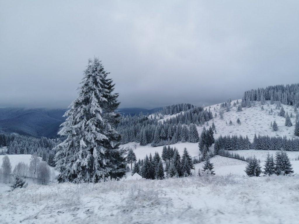 Winter wilderness on Rucar Bran Mountain Pass