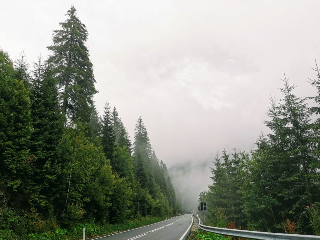 Mysterious fog on Prislop Pass