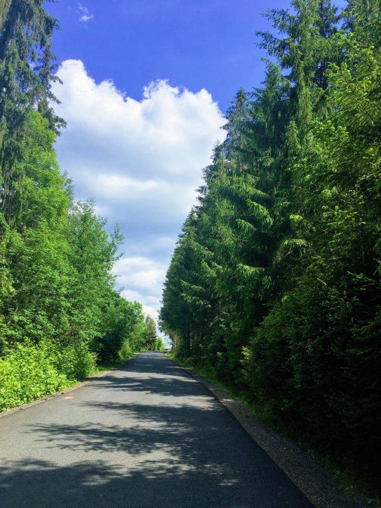 Transursoaia Road