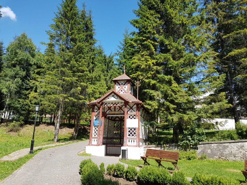 Spring in Borsec