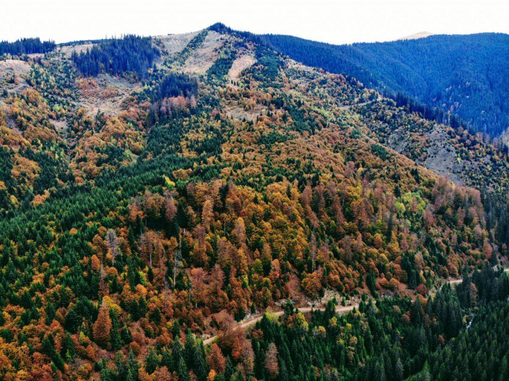 View over Parang Mountains