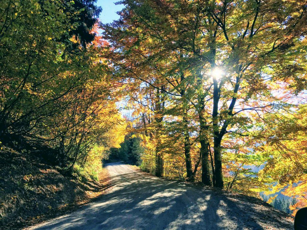 Road to Magura
