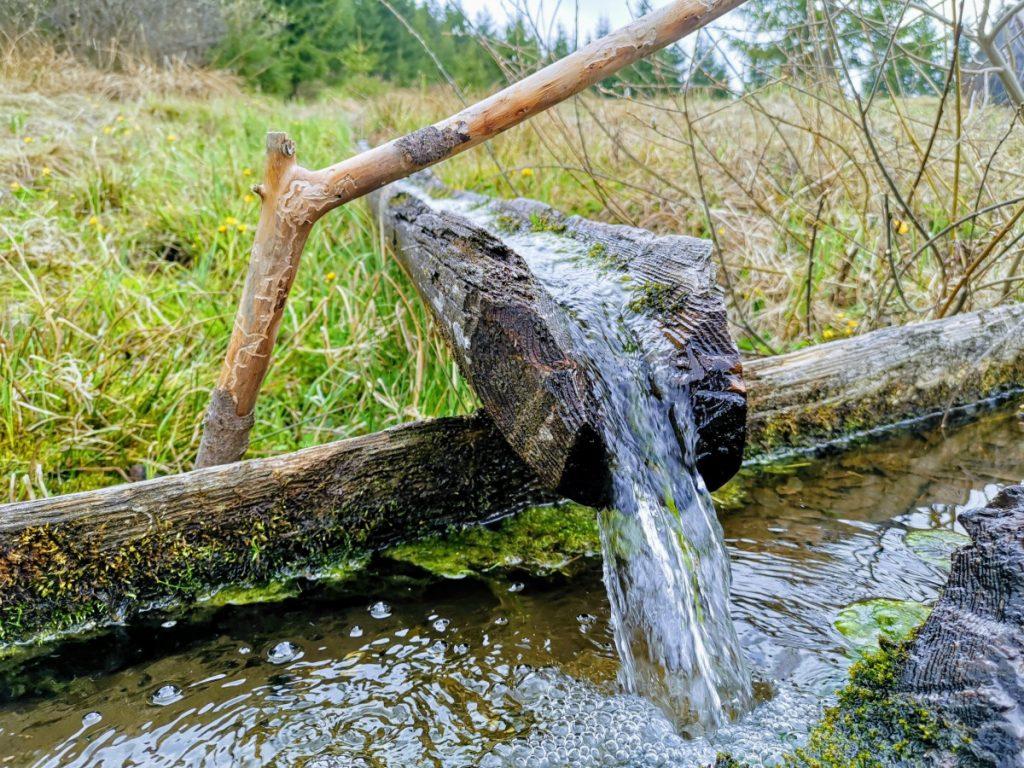 Spring of River Olt