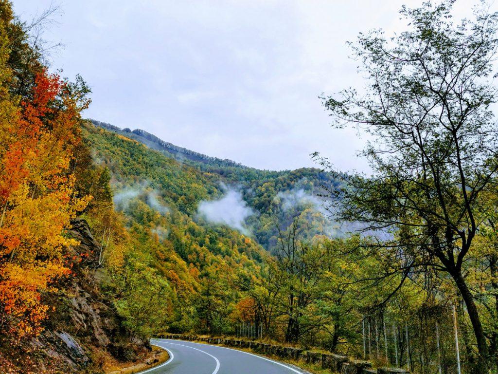 roads in autumn