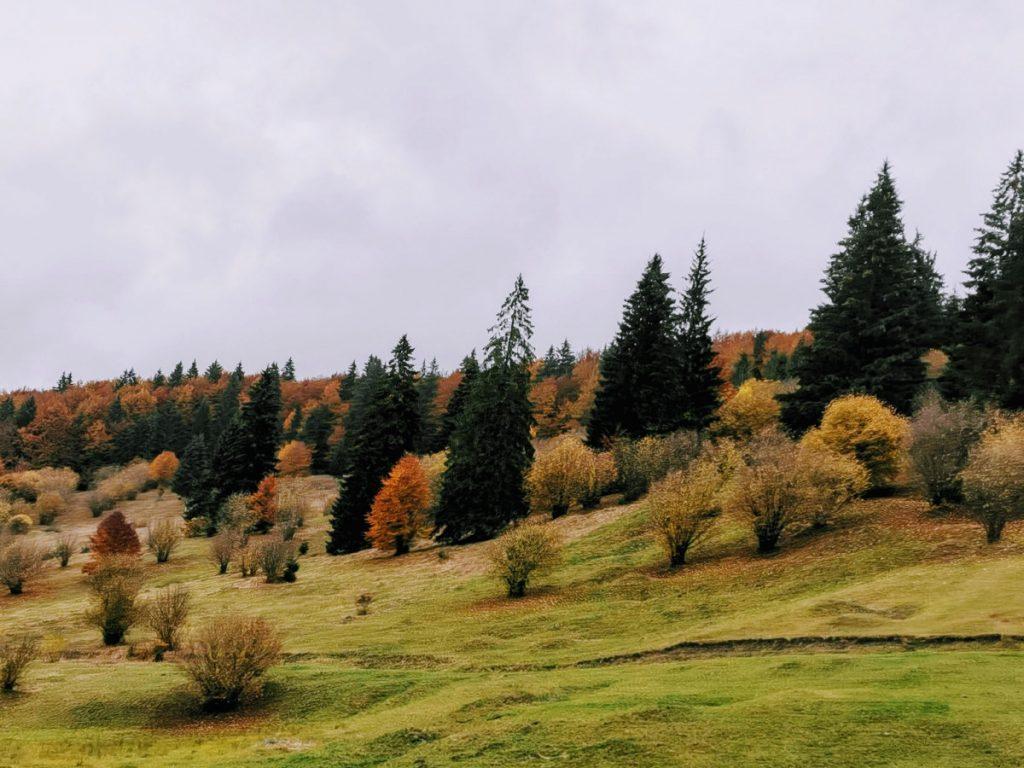 Autumn in Tusnad Pass