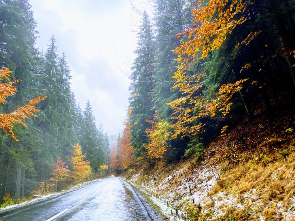 Amazing colors in Bucin Pass