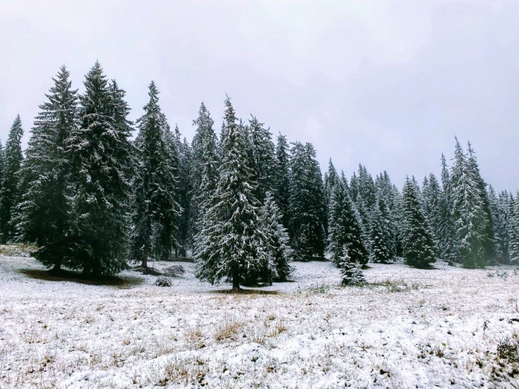 Winter in Bucin Pass