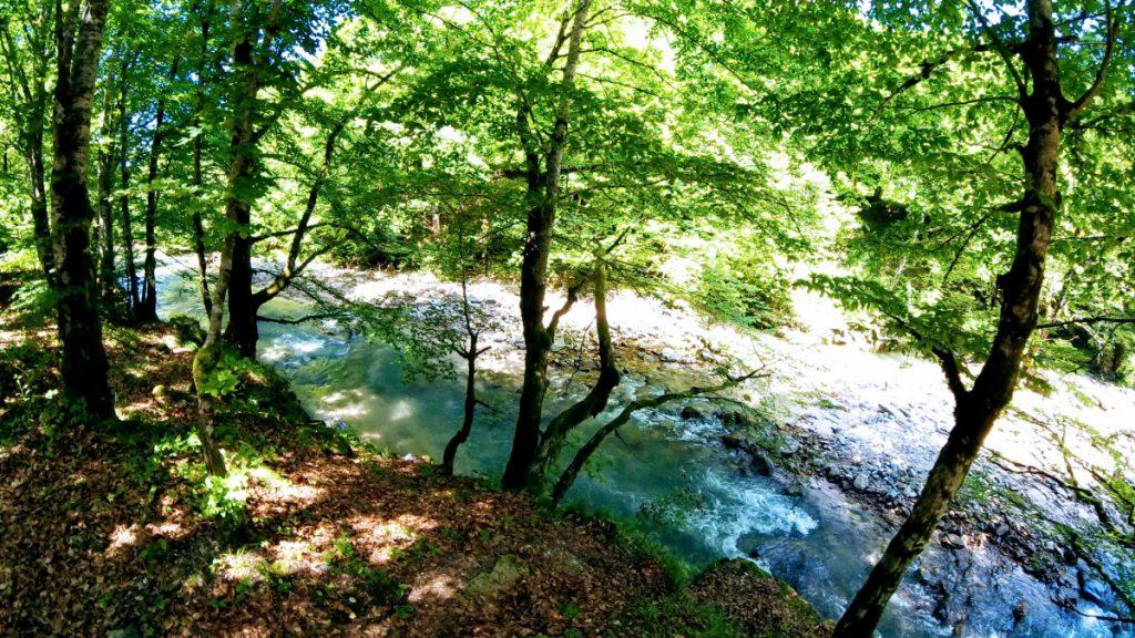 Amazing color at Crisul Pietros River